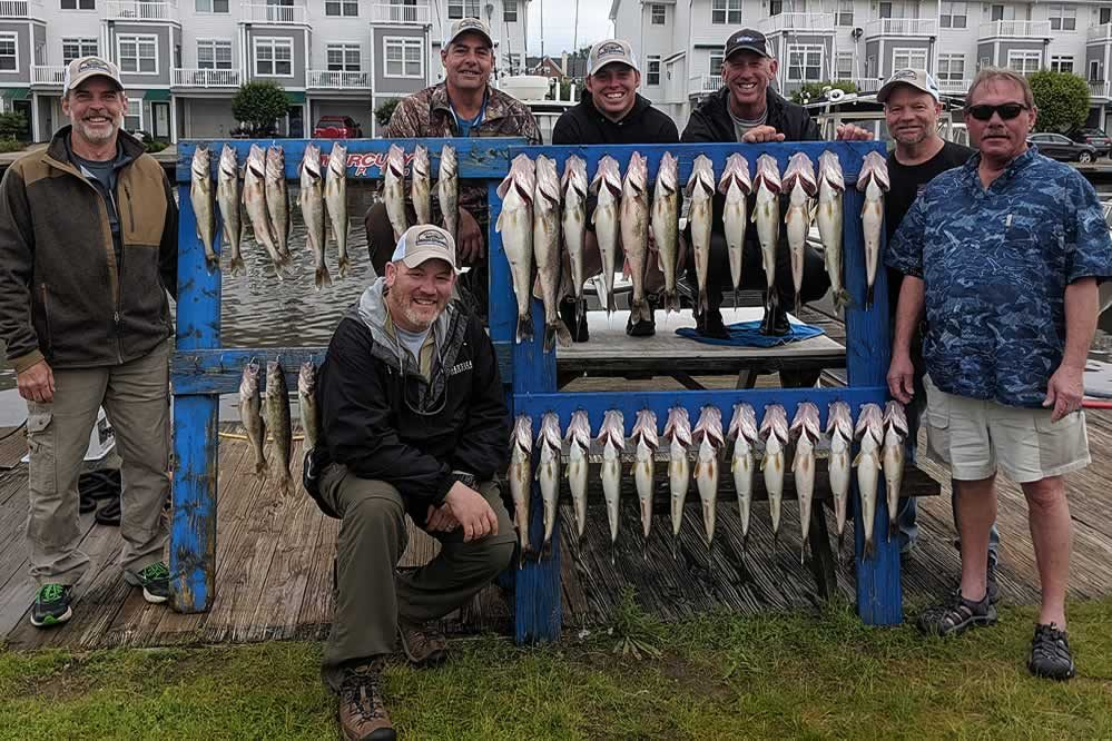 Blue Dolphin Walleye Charters - 060719