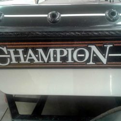 2007-Champion-206CX-SC-Evinrude-225-Ficht-2XTalon-8
